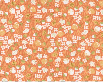 Cozy Up Cinnamon 29122 12 by Corey Yoder of Coriander Quilts for Moda Fabrics
