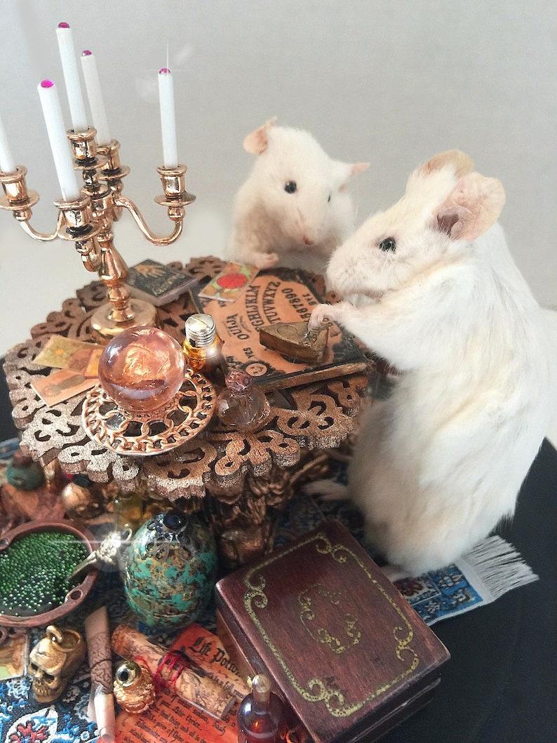 SALE Taxidermied Mice The Seance Handmade image 0