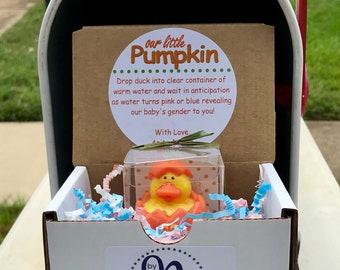 Our Little Pumpkin Gender Reveal Mail Announcement for Out-of-Town Family and Friends | Halloween Gender Reveal | Autumn Gender Reveal