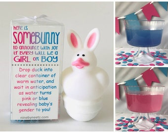 SomeBunny Gender Reveal Fizz Set of 2 | Easter Gender Reveal | Bunny Gender Reveal