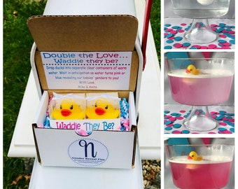 Double the Love...Waddle They Be?  Twin Gender Reveal announcement by Mail