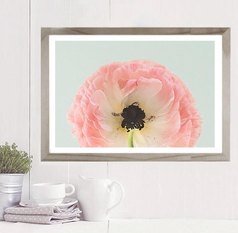 Ranunculus Floral Print Nursery Decor Nursery Wall Art Flower Photo Modern Art Print Pink Floral Print Wall Decor Spring Print