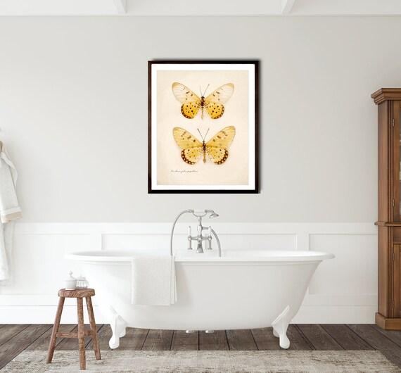 Butterfly Art Print Modern Farmhouse Decor Butterfly Photography Bathroom Wall Art Yellow Orange Bathroom Decor Canvas Art