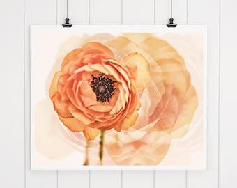 Abstract Peach Flower Print, flower photography, home decor, ranunculus art, cottage decor, orange floral, fine art flower photo