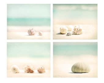 Beach House Decor, Set of Four prints, beach photography, wall art, beach print, shell print, shore house, sea urchin, wall decor set