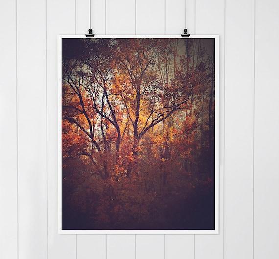 AUTUMN LEAVES TREES LANDSCAPE ART PRINT Nature Photograph Decor Wall Picture
