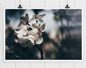 Moody Blue and Pink Flower Photography Art, Floral Art Print, Flower Blossom Wall Art Pink Floral Print, Nursery Decor, Flower canvas art