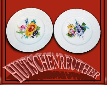 """Hutschenreuther Hand Painted Plates 8"""" Set of Two."""