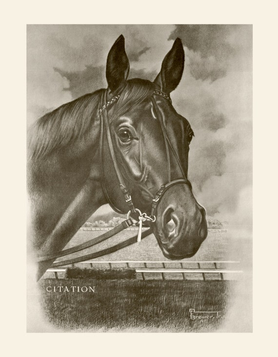 Citation 1948 Triple Crown Winner