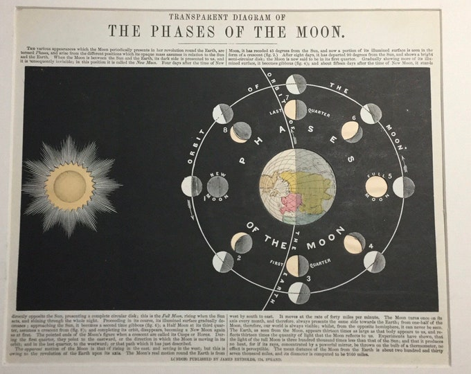 11 matted antique astronomy illustrated plates mostly dating from 1850-1880, lunar, moon phases, eclipse, solar system, zodiac, stars