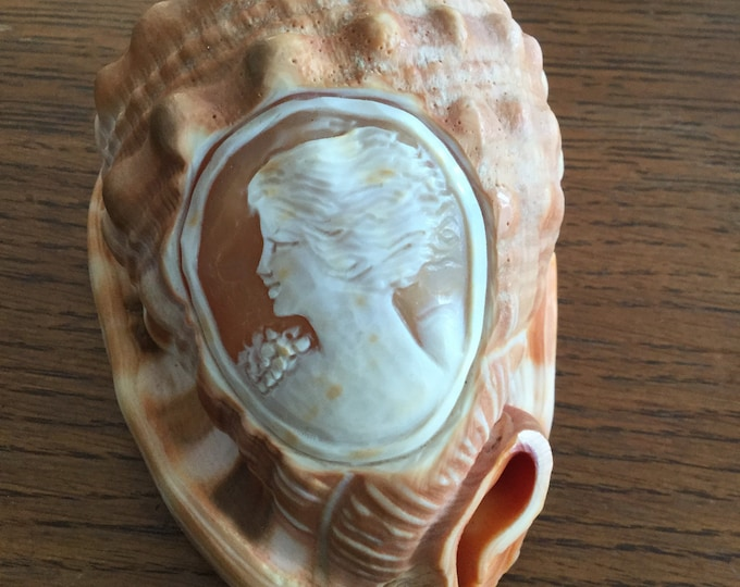 Art Nouveau Cameo Carved Bullmouth Helmet Shell,  wild woman with windswept hair, goddess