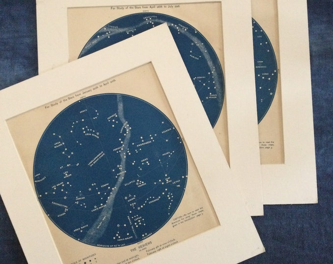Lot of three 1886 Astronomy illustrations, original antiques, zodiac, stars, constellations, night sky, ready to frame