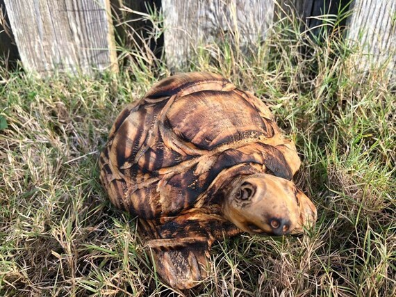 Chainsaw carved turtle etsy