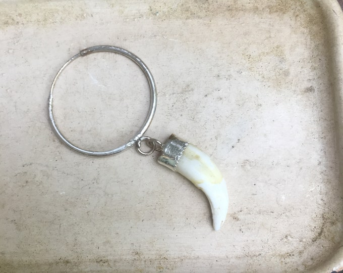 Coyote Tooth single hoop earring Made-to-order