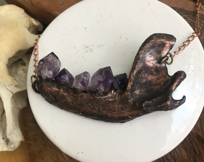 Proteas Series- Raccoon Jaw and Amethyst Necklace