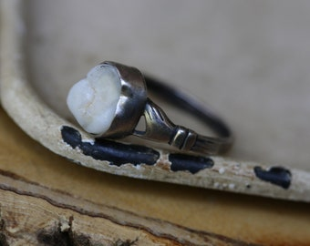 Lover's Hand Single Tooth Ring (Made in your size)