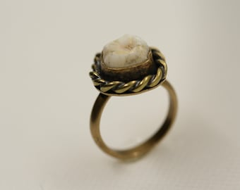 Brass single tooth ring Made in your size