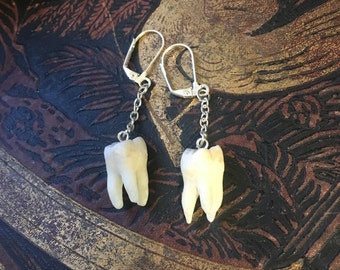 Long in the Tooth earrings in silver