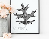 Black Oak Tree Leaf Print...