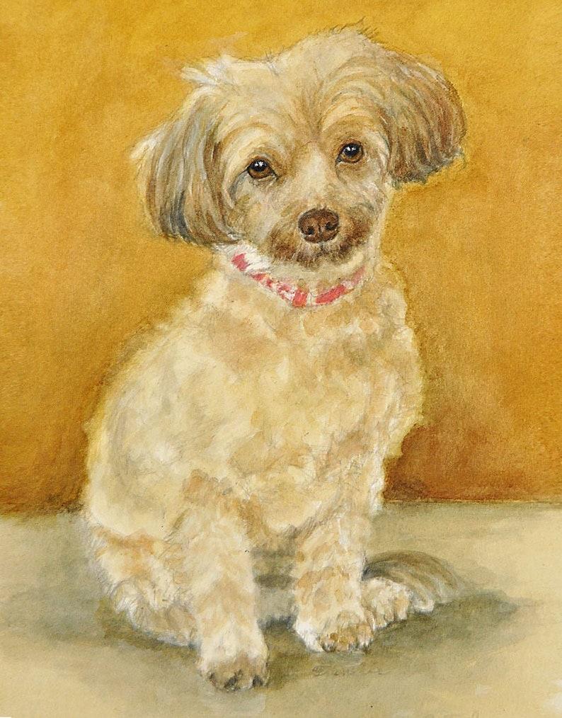 Havaneser Hund Kunstdruck Havaneser Hund Aquarell Havaneser Kunst Kunstdruck Hund Hund Aquarell Von P Tarlow