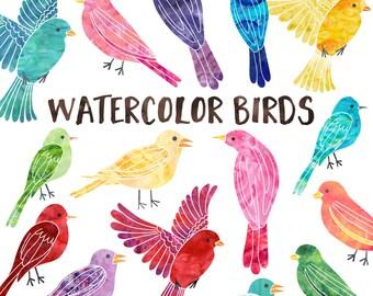 Watercolor Bird Clipart, Commercial Use Instant Download, Watercolor Birds Clip Art