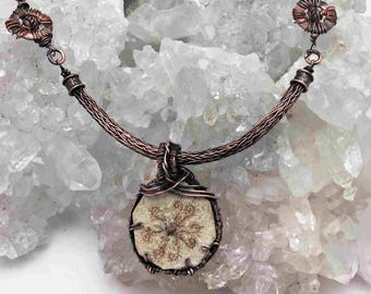 Very rare Starfish Fossil With Handmade Viking Knit Chain and Copper Wire Wrapping - Handmade in the USA