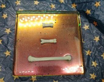 Muskrat Bone Decorative Tray or Coaster Color Shift