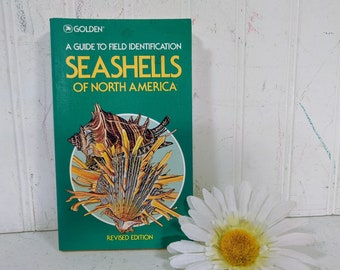 Seashells of North America Book Guide to Identification Golden Press Field Guide Seashell Illustrations Art Science Seashell Collector Book