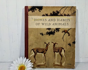 Homes And Habits Of Wild Animals Book by Karl Patterson Schimidt & Illustrator Walter Alois Weber 12 Full Color Illustrations Plus Sketches
