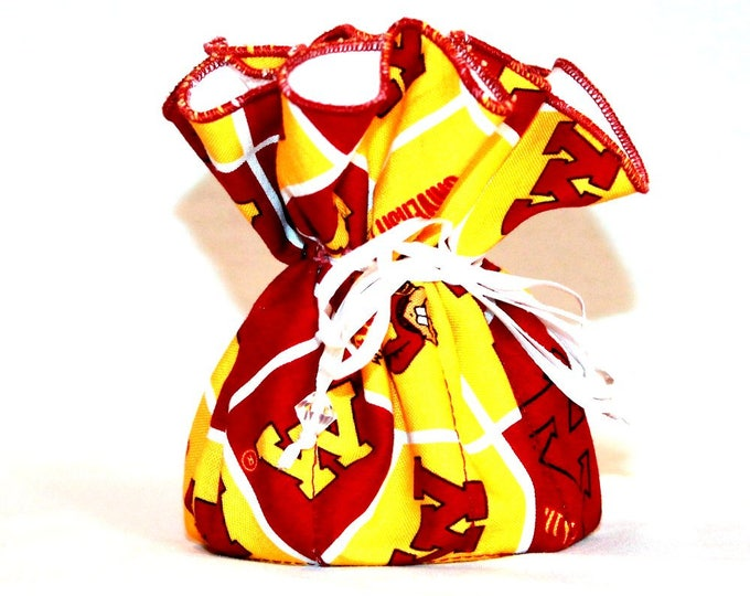 UNIVERSITY MINNESOTA  Fabric Jewelry Organizer ~ Pouch ~ Storage Case ~ Bag ~ Tote - Bell Art Designs ~ Medium ~ JBMD0421
