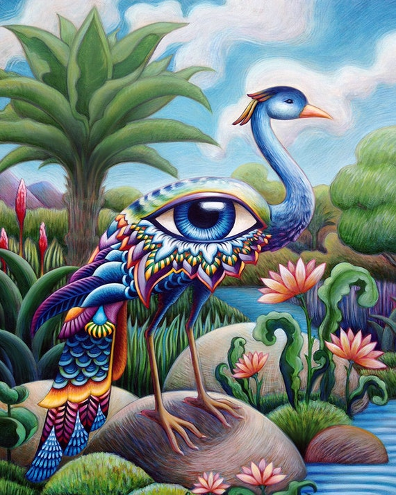 Tropical Eye Bird