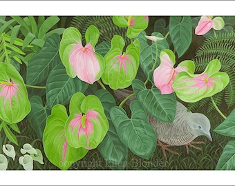 Anthurium, Large Giclee Print
