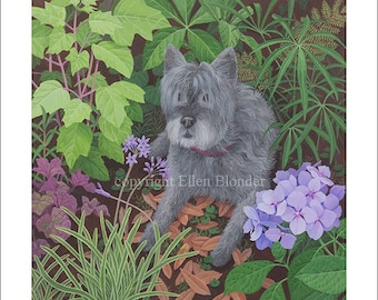 Alex, the Cairn Terrier, Small Giclee Print