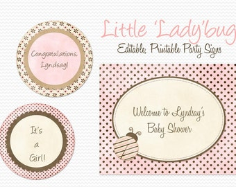 Pink Ladybug Party Signs, Welcome Sign, Girl Baby Shower Decor, Birthday Party Decoration, Pink and Brown - Editable, Printable, Instant