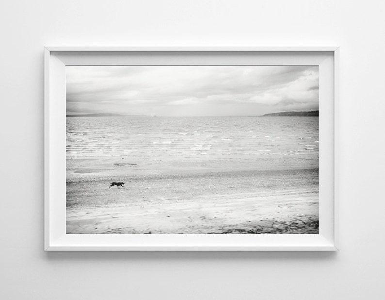 Dog Art Black And White Beach Print Minimalist Beach Home Etsy