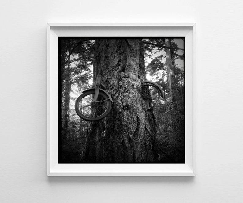 Seattle Art Vashon Island Bike Tree Black and White image 0