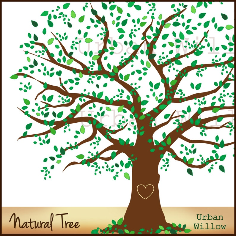 Family Tree 12 Inch Natural Tree Clip Art Large Leafy Tree Elm Tree Oak Tree Graphic Family Tree Illustration
