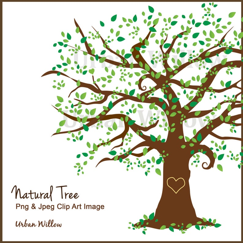 Family Tree Clipart Clipart Beautiful Tree Clipart Elm Tree Maple Tree Clipart Digital Scrapbook Family Tree Green Tree Oak Tree