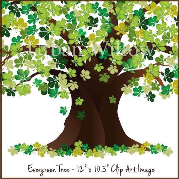 evergreen clipart tree tree graphic green tree oak tree etsy