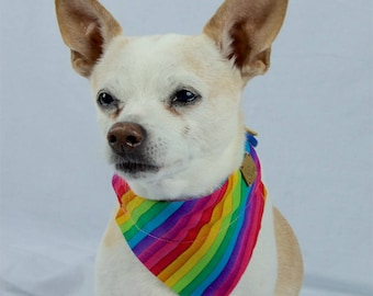 Rainbow and Paw Print Reversible Dog Bandana, Slip-on Collar Dog Bandana, Rainbow Dog Scarf, LBGTQ Pride Dog Scarf