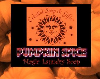 Pumpkin Spice VEGAN Laundry Soap Powder 6 oz. SAMPLE 5-10 LOADS Detergent