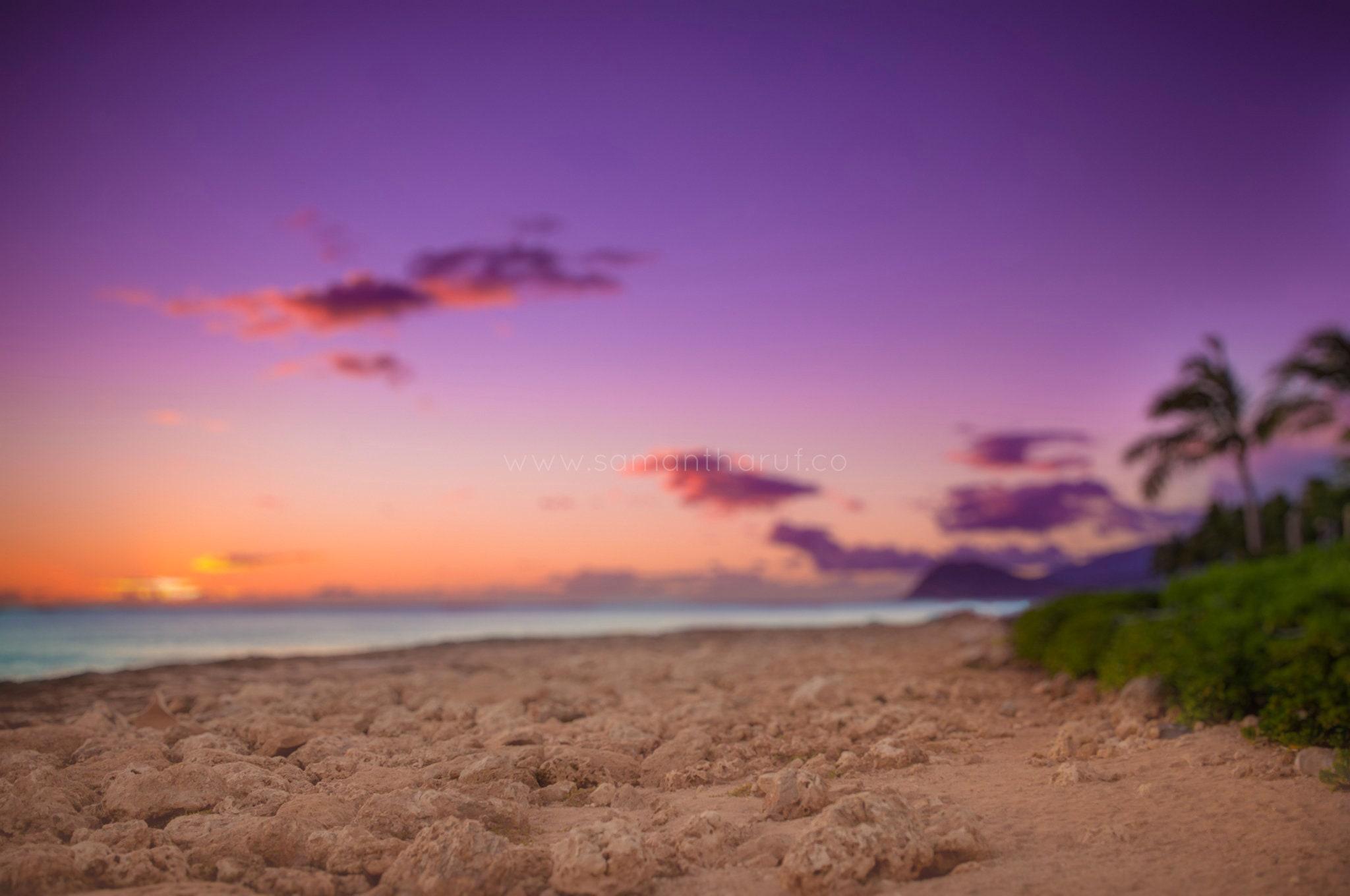 Waiotahi Beach Digital Background