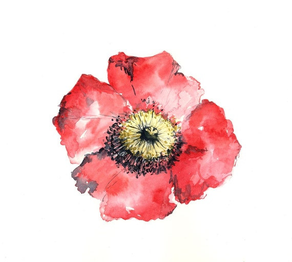 Watercolor Poppies Tutorial | Speed Painting - YouTube |Watercolor Poppies Pink