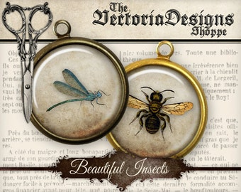 Insects Collage Sheets, Insects Circles, Digital Insects Images, Insects Background, Digital Circles, Bee Decoration, Vintage Images 001118