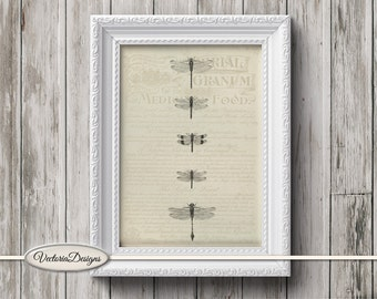 Dragonfly Mini Poster vintage crafting paper craft art prints wall art instant download printable paper digital collage sheet - VDPOVI1422