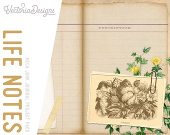 Life Notes Journal Project Pack, Printable Paper Craft, Journal Notes, Digital Paper Scrapbook, Journal Pages, DIY Kits, Craft Kit 001980