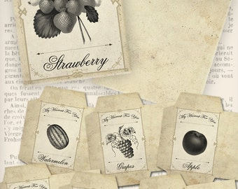 Fruit Seed Packets Seed Envelopes instant download digital collage sheet VDENVI0862