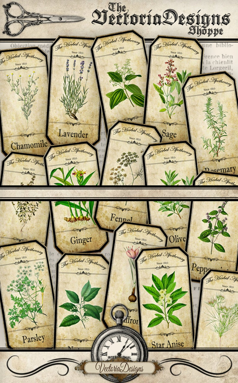 Herbal Apothecary Labels Apothecary Bottle Labels Spice Jar image 0