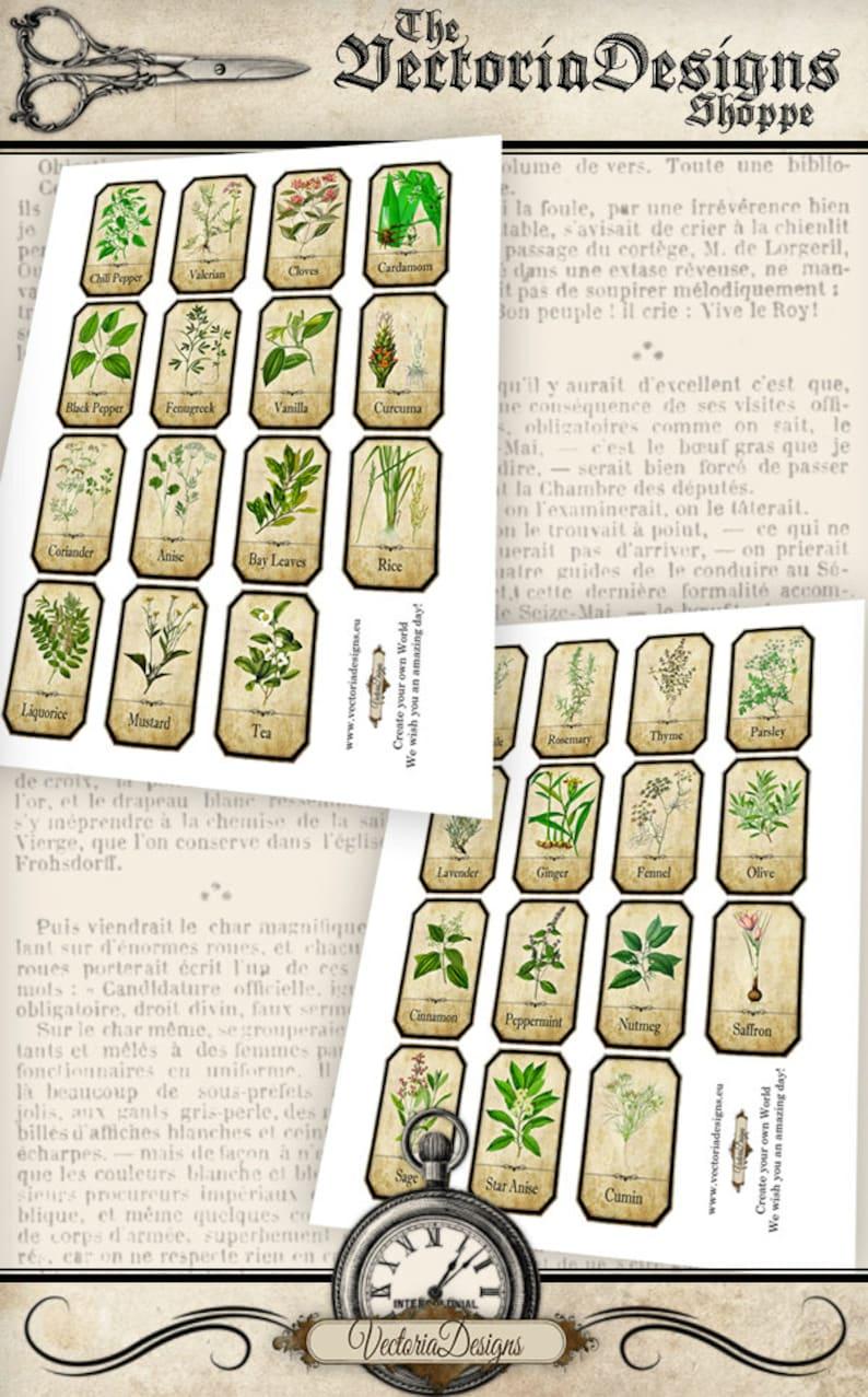 Printable Spice Labels Jar Labels herb labels kitchen labels VD0612 spice rack digital download instant download digital collage sheet