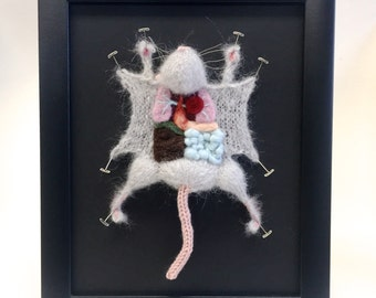 Grey Knitted Lab Rat: Framed with Black Background